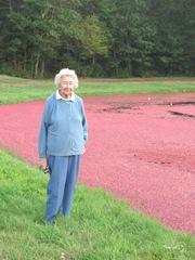 Cranberry Harvest Gerts bog 2011Gert 2