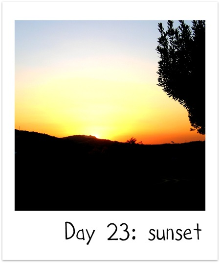 day23