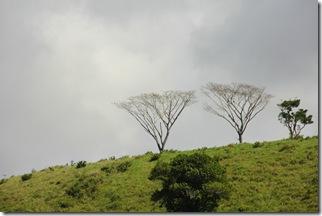 31-07-2011 Rio do Engenho 108