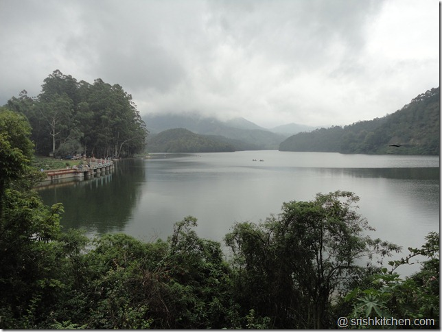 munnar tour 140