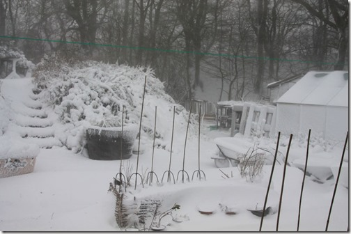 4-snow