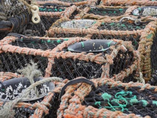 Crab pots - Mudeford harbour