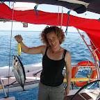 frischer Fisch, nachdem Timtam weg ist, Komodo
