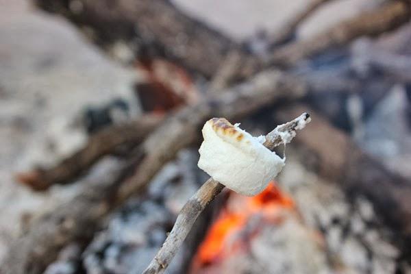 marshmallow roasted