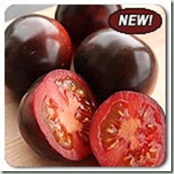 organic-seeds-indigo-rose-tomato-new-01
