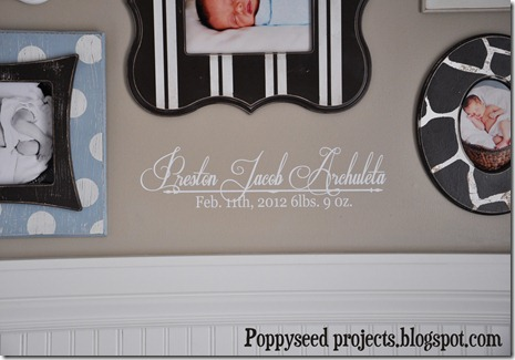Preston's Nursery - Vinyl Close Up