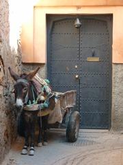 marrakech 2011 072