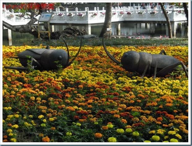 台南公園3.