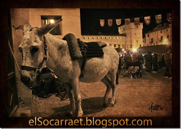 Fira Tots Sants 2012 elSocarraet © rfaPV b