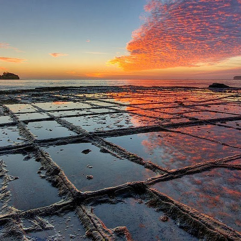 The Tessellated Pavements of Tasmania