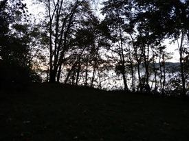 The Potomac through the trees