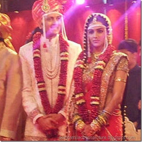 ratesh-genelia-wedding-images