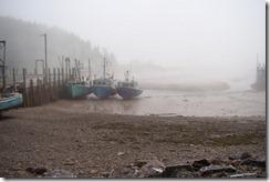 2012-06-11 DSC04733 low tide
