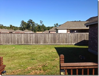 Running & Fence Staining (12)