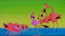 05-1 Le Carnaval des animaux