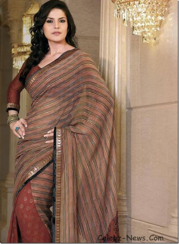 zarine-khan-saree-15