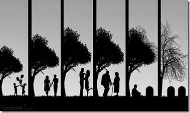 stages of life from birth to death