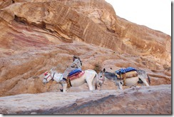 Oporrak 2011 - Jordania ,-  Petra, 21 de Septiembre  326