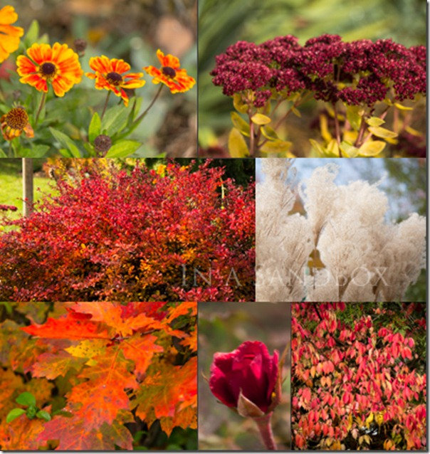 Late October Reds Mosaic