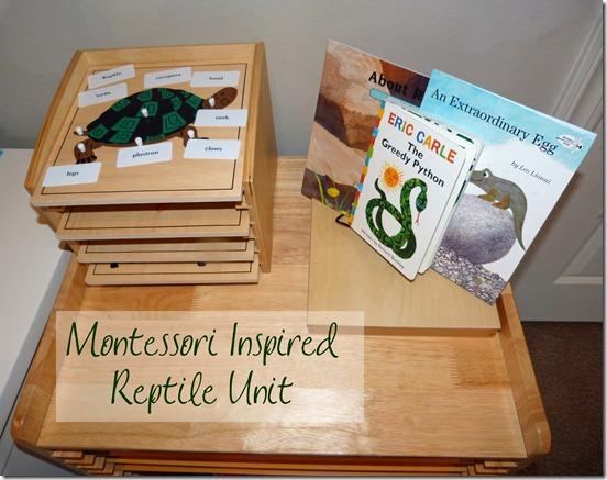 Montessori Inspired Reptile Unit 2
