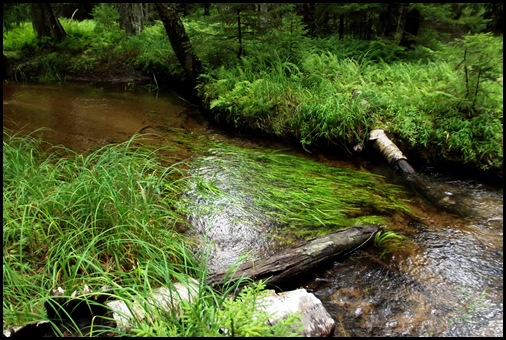 Jordan Stream and 4 bridges 213