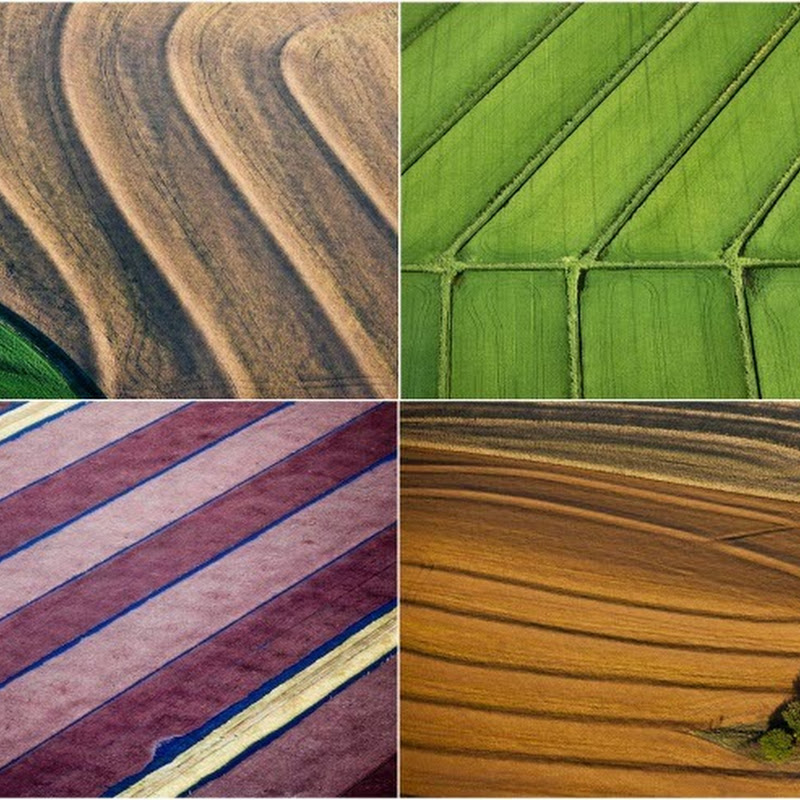 Farm Lands From Above: Aerial Photography by Alex MacLean