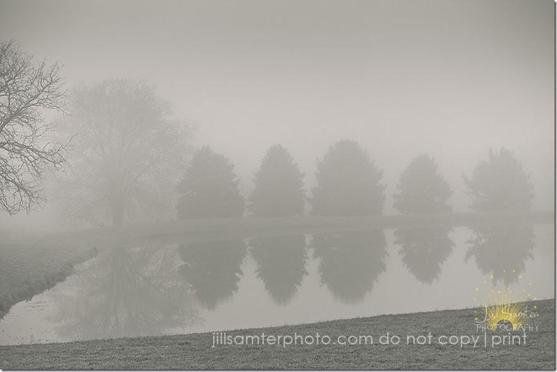 fog-5432