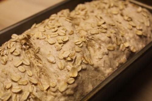 honey-graham-oatmeal-spelt_013