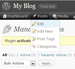 Wordpress adminbar delate 6