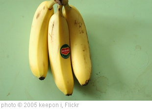 'banana' photo (c) 2005, keepon i - license: http://creativecommons.org/licenses/by/2.0/