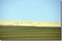 07-14 khongor 069 800X dune