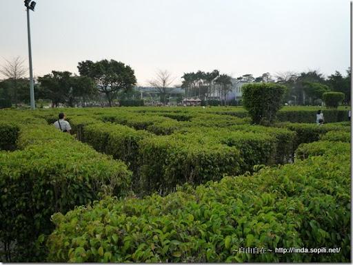2010台北花博-迷宮花園