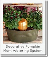 pumpkin-automatic-mum-watering-syste[1]