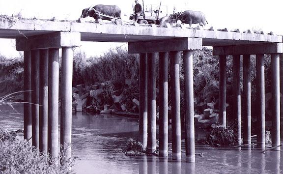 大埤浮水橋景緻