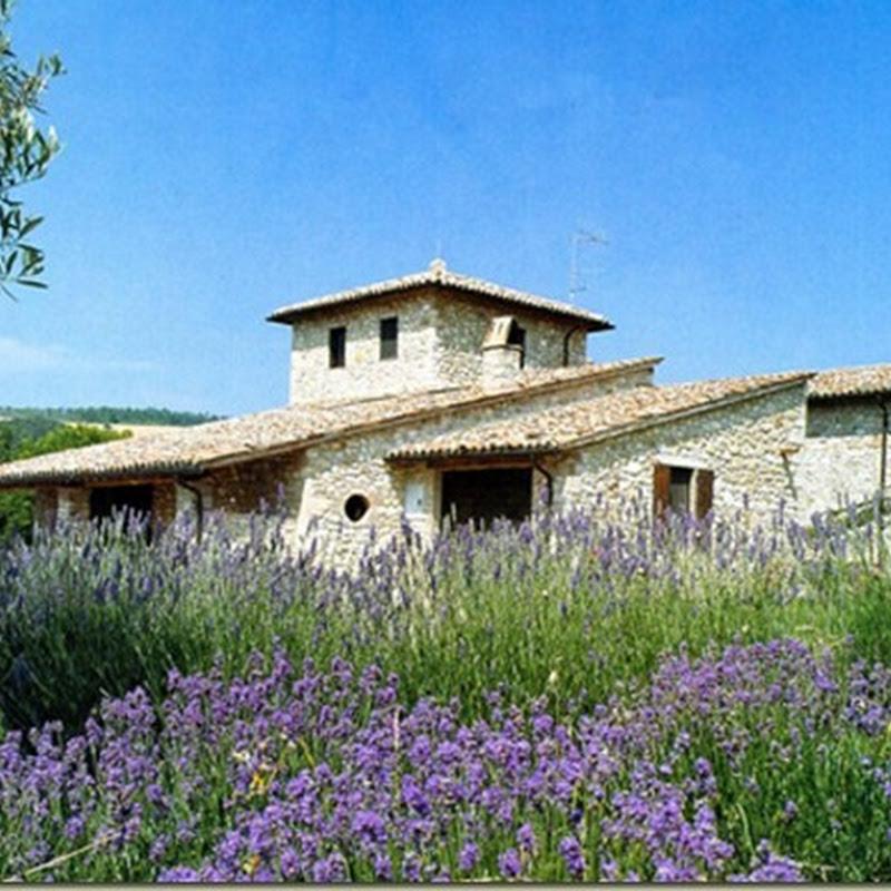 Amazing Tuscan Stone Villas