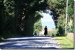 Præstens Vej i Vindeballe