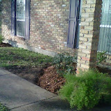 New Flower Beds4.jpg
