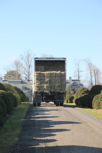 And big trucks can carry big loads!  Just look at all that hay!7