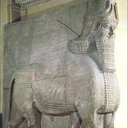 44 - Toro alado del palacio de Ninive