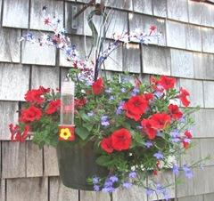 2012 Redwhiteblue hanging pot2