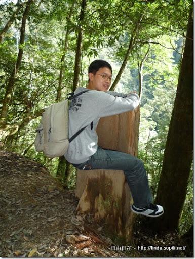 司馬庫斯-day2-木製椅