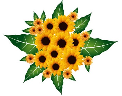 Sunflower-Vector