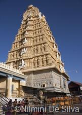 2013 01 15 Mysore (51 of 137)