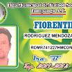 FIORENTINA 13.jpg