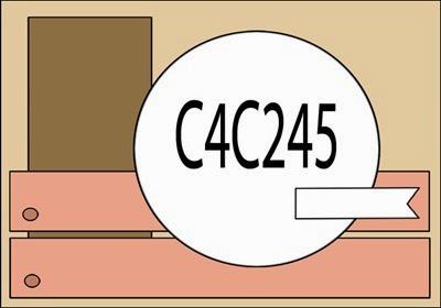 C4C245-Sketch