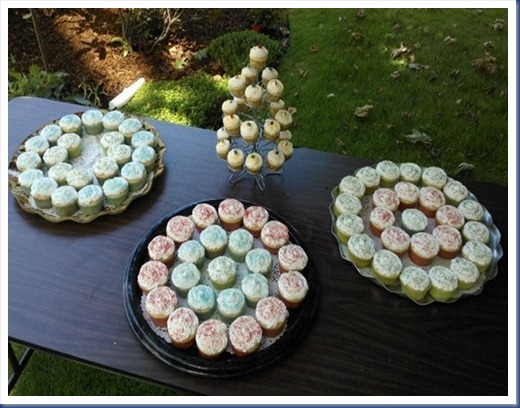 Picnic Cupcakes 2
