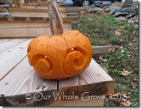 spiral pumpkin