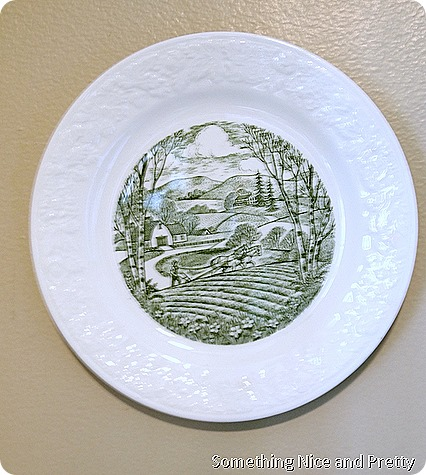 plates2013 008