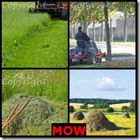MOW- 4 Pics 1 Word Answers 3 Letters