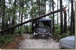 05 - Pine on Motorhome from front[1]